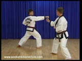 1 Step Sparring 3 and 4 (Il Soo Sik Dae Ryun)