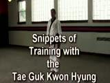 Tae Guk Kwon Hyung Snippets