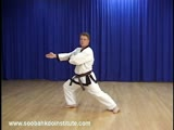 Orange Belt Hand Techniques - Soo Gi