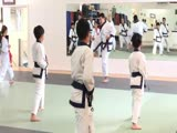 2017 KDJSS - John Kim Kyo Sa (23643) Teaching Video