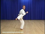 Orange Belt Foot Techniques (Jok Ki)