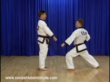 1 Step Sparring 13 and 14 (Il Soo Sik Dae Ryun)