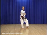 Red Belt Use of Hip
