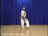 Red Belt Use of Hip