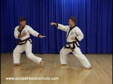 1 Step Sparring 9 and 10 (Il Soo Sik Dae Ryun)