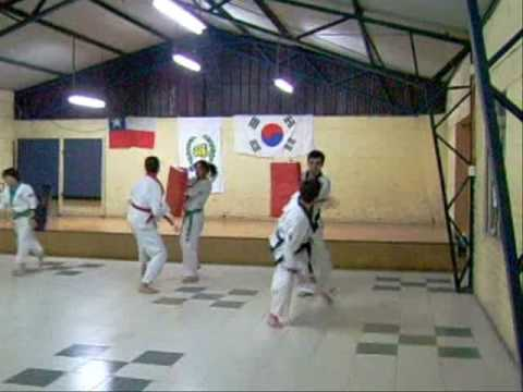 SU BAHK DO MU DUK KWAN CHILE TRAINING DAY