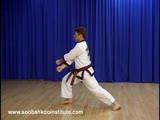 Green Belt Hand Techniques (Soo Gi)
