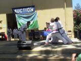 Karate Demo Team 2013