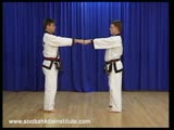 1 Step Sparring 1 and 2 Il Soo Sik Dae Ryun