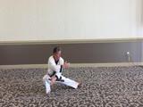 Hwa Sun - Mae Bok Sae Instruction
