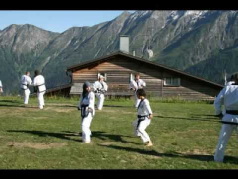 soo bahk do: Switzerland summer camp 2008