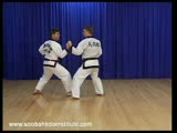 Sparring Combination 1 Dae Ryun Cho Hap