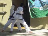 Karate Demo Team 2012